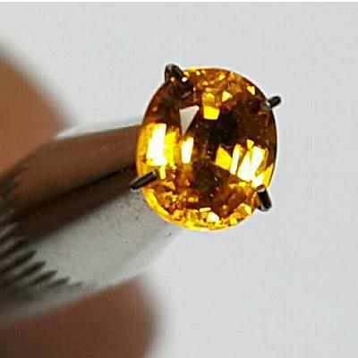 Yellow Golden Sapphire Ceylon
